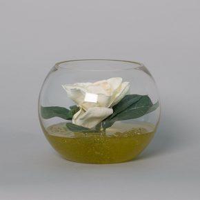 Gardenia in a Small Glass Bowl