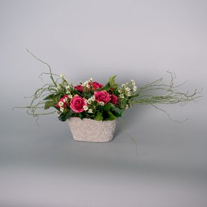 Hot Pink English Roses with Mahonia Grass in a Cement Pot