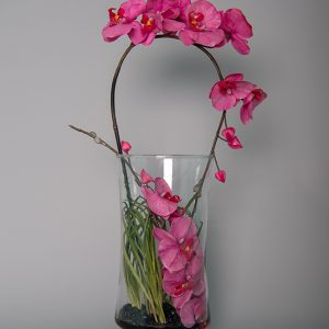 Hot Pink Orchid in a Glass Vase