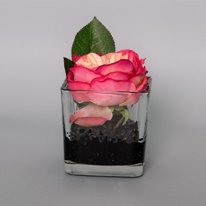 Hot Pink Peony in a Glass Cup