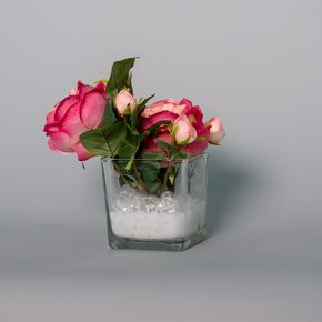 Hot Pink Peonies in a Glass Cup