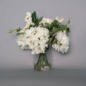 White Hydrangeas in a Glass Vase