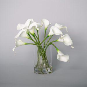 Cala Lilies in Acrylic