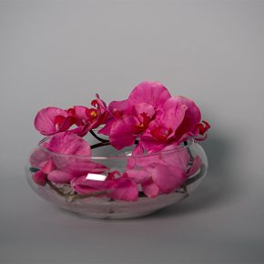 Hot Pink Orchids Decorated with White Stones in a Fish Bowl